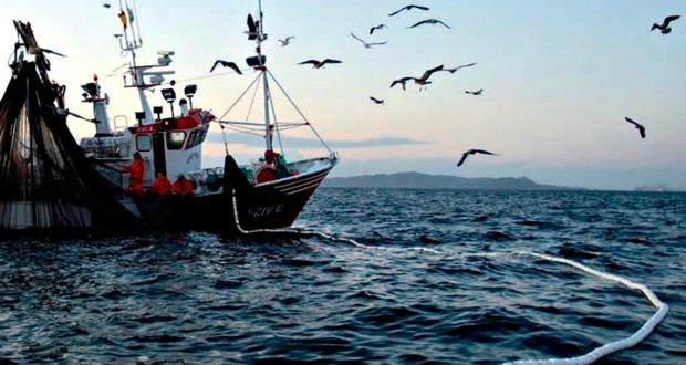 OPINION: Persiguiendo la pesca ilegal